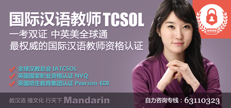 国际汉语教师TCSOL